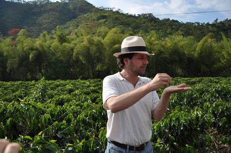 Challenging misconceptions in Colombia. Part of the process from crop to cup, Zona Cafetera (coffee-producing zone), Colombia.