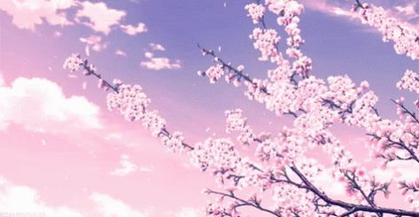 Cherry Tree Aesthetic Anime 35 Ideas In 2020 Anime Scenery Anime Scenery Wallpaper Anime Backgrounds Wallpapers