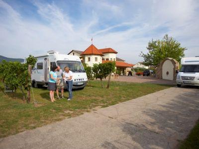 Reisemobile Weingut Schafer Mussbach Pfalz Weingut Reisemobil Reisen