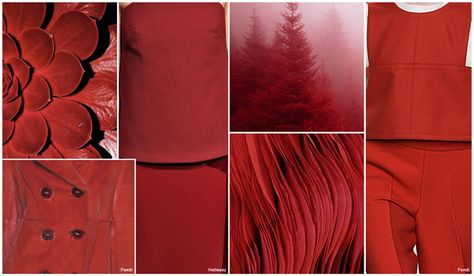 Top Color, Womens Market, F/W 2016-17, Rust -- Rust moves away from orange influence and becomes a much more red cast color. Tonal pairings incorporate rust with red orange or cognac.