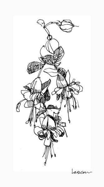 Image Result For Fuschia Drawings Fuchsia Flower Black Tattoos Tattoos