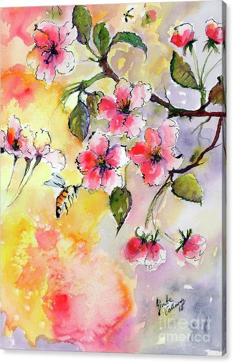 Apple Blossoms And Bee Watercolor Canvas Print Canvas Art By