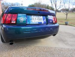 Limited Edition 2004 Svt Mystichrome Cobra For Sale On Usedmustangsforsale Com Mustang For Sale Used Mustangs For Sale Used Mustang