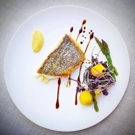 Foodstar Gayle van Wely Quan (@gayleq) shared a new image via Foodstarz PLUS /// Black Bass Scallions Asparagus Beetroot Purple Radish Microgreens Red Frills Curry Sour Cream Pomegranate Soy Molasses  #bass #asparagus #curry #micro #plating #foodstarz  If you also want to get featured on Foodstarz just join us create your own chef profile for free and start sharing recipes images and videos.  Foodstarz - Your International Premium Chef Network by foodstarz_official