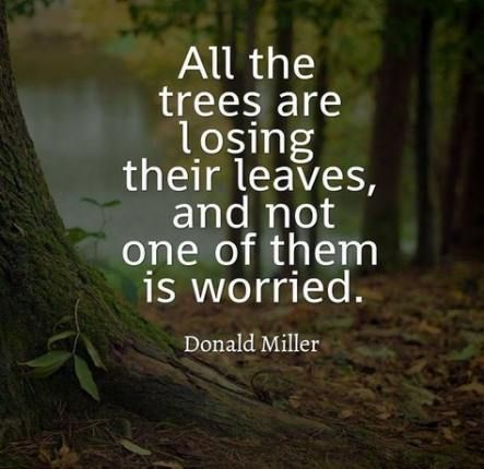 trendy ideas for quotes life nature god quotes nature