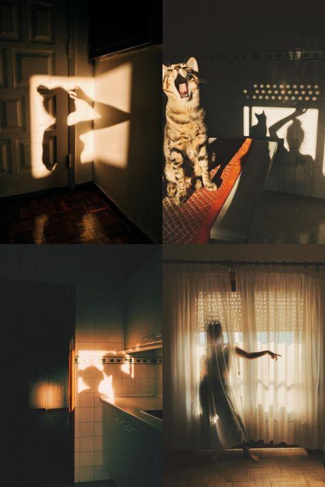 Through the Lens of: Sara Latif