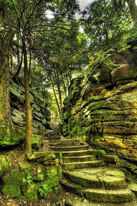 ˚The Stairs at Cuyahoga Valley National Park - Cleveland, Ohio