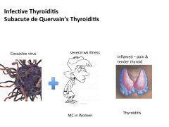 2 Endocrinology Flashcards Cram Com Nursing Mnemonics Flashcards Study Flashcards