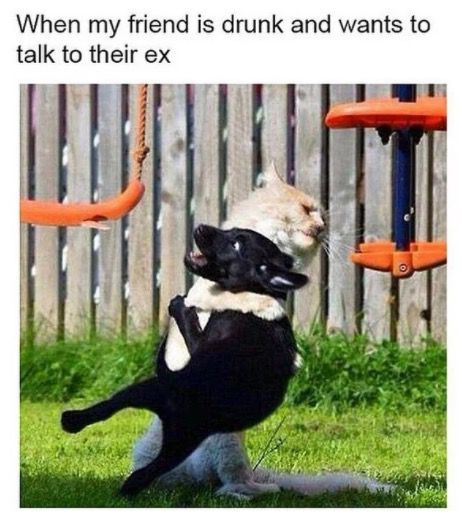 33 Spot On Friendship Memes You Should Send To Your Best Pal Immediately Funny Friend Memes Friendship Memes Funny Dating Memes