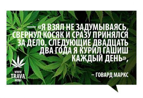 Конопля цитаты легализация марихуаны в казахстане 2017