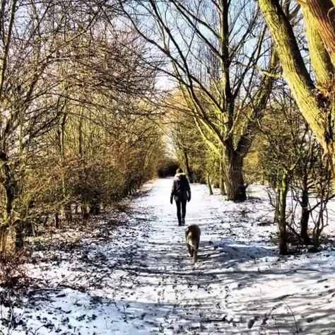 [NEU] Die beste Winterjacke gegen das kalte Wetter
