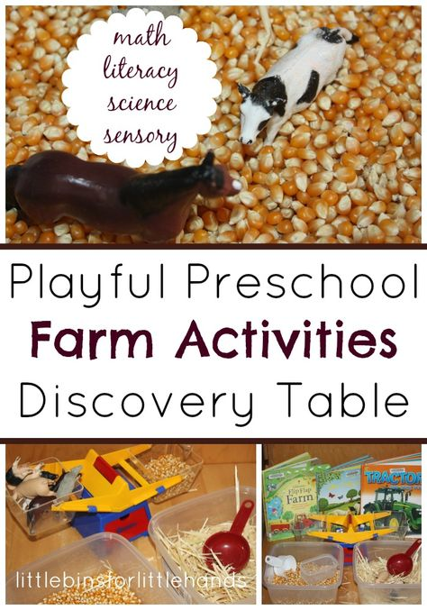 Farm Activities Discovery Table Math Literacy, Science Sensory
