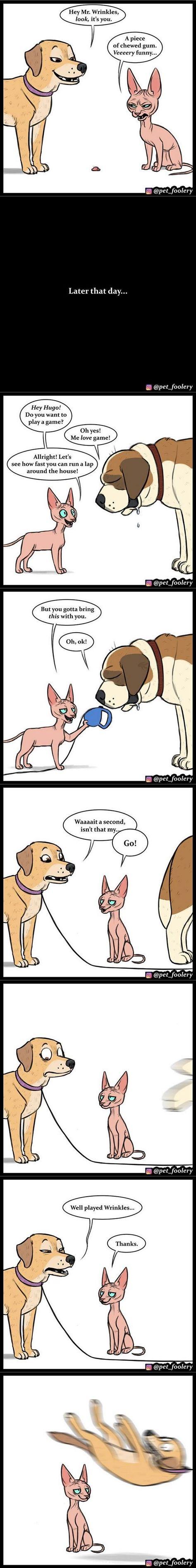 Pet play geschichten