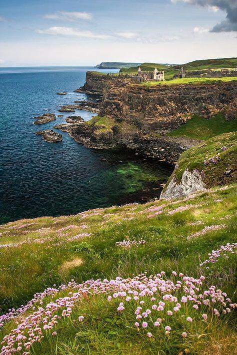 ✯ Sea Cliffs of Northern Ireland in Spring