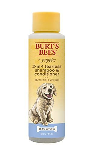 Top 10 Best Puppy Shampoos Of 2020 Review Buyer S Guide Best Dog Shampoo Puppy Shampoo Dog Shampoo