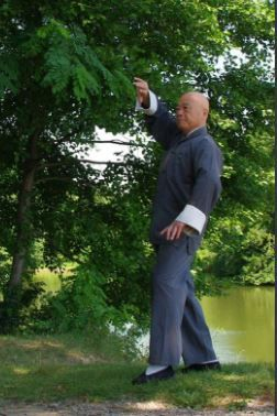 Tai Chi Chuan Style Yang Originel : chuan, style, originel, Practice-, Originel, Style, Master, King-Hung, Remèdes, Naturels,, Remede