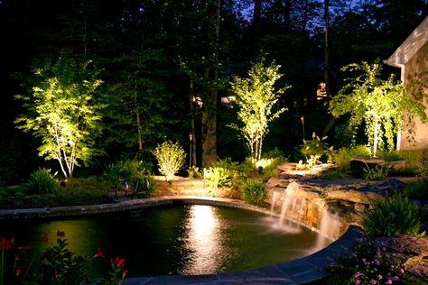 Illuminazione alberi da giardino pictures illuminazione alberi