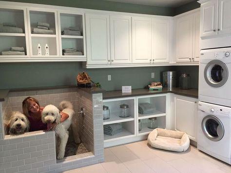 Best Diy Dog Wash Spaces 50 Ideas Finding Apartments New Housing Developments Pet Suite