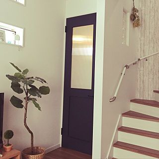 玄関 入り口 ネイビーの扉 階段 初投稿 観葉植物 などのインテリア