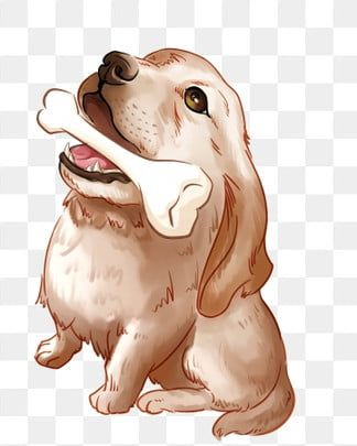 Animals Png Images Vector And Psd Files Free Download On Pngtree Puppy Clipart Pitbull Art Animal Clipart