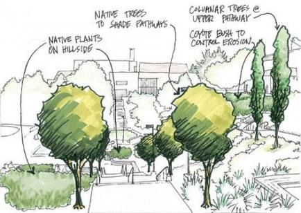 70 Trendy Landscaping Architecture Drawing Trees In 2020