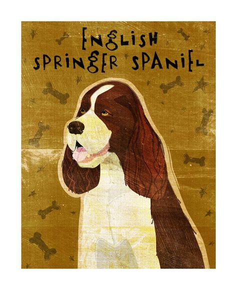 Dog Print 11 X 14 Limited Quantity Available At Special Price Stretched Canvas Prints English Springer Spaniel Canvas Prints