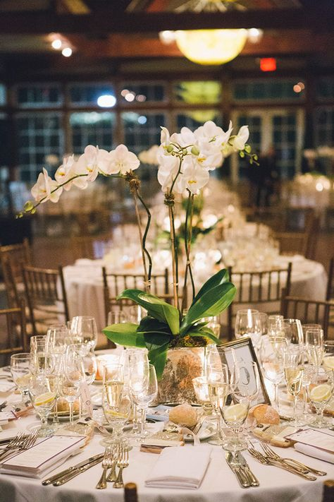 """Old New York"" Art Deco Themed Wedding; Orchid Wedding Centerpieces; potted plants cheaper than cut flowers"