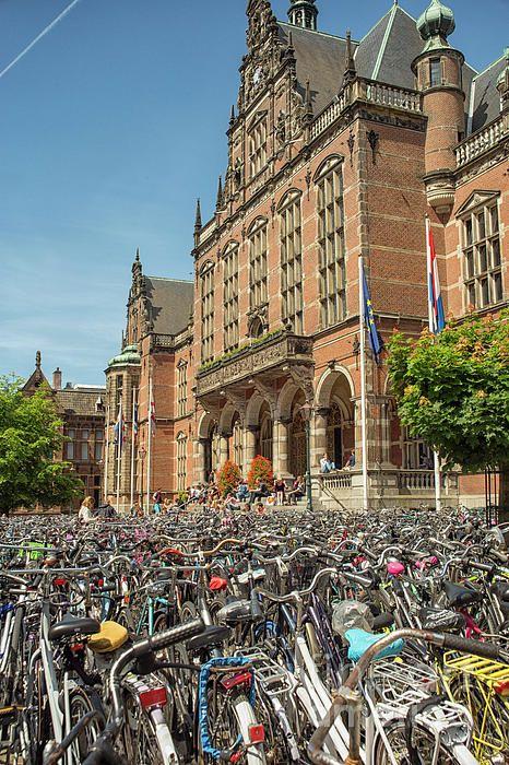 Hundreds Of Bikes In Front Of The Main Entrance Of The Rug University Of Groningen In The Netherlands Patriciahofmees Leiden Netherlands Netherlands Groningen