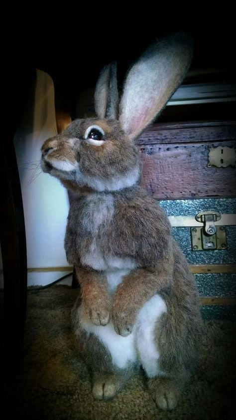 Adorable life sized 100% needle felted Alpaca fiber Cottontail Bunny Rabbit with wire armature to position. Firm felting. Created with alpaca fiber from my own herd. Shorn, processed, and needle felted by myself, Stevi T.. This Bunny is firm and free standing. Inspired by the rabbit invading my