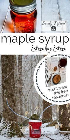 How To Make Maple Syrup Step By Step Soulyrested Diy Maple Syrup Maple Syrup How To Make Syrup