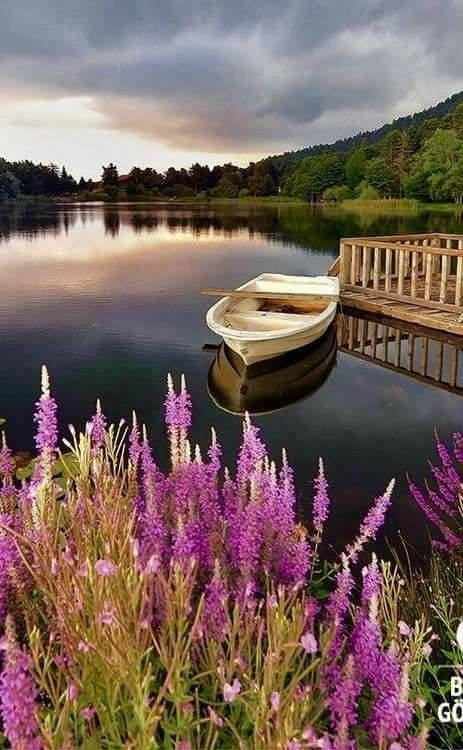 Lonely rowboat on a still lake