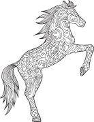 Mandala Pferd Welches Steigt Ausmalbilder Pferde Mandala
