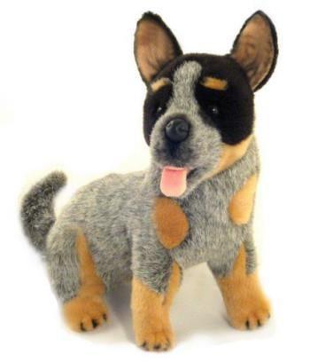 Baby Cattle Dog Soft Plush Toy 27cm Australian Cattle Dog