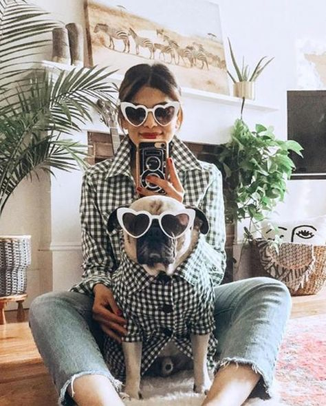 Gingham Button Down | Collared Black & White Checkered Plaid Dog Shirt by Dog Threads – Dog Threads™