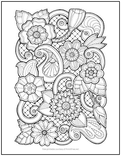 Floral Paisley Coloring Page Paisley Coloring Pages Monster Coloring Pages Coloring Pages
