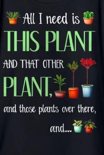 Pin By Jacquelindelas On Outdoors Funny Garden Signs Plant Jokes Gardening Memes
