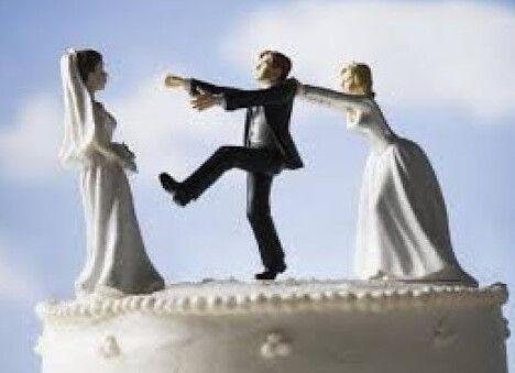 تفسير حلم رجل متزوج والزواج منه للعزباء والمتزوجة والحامل Animals Bird Doves