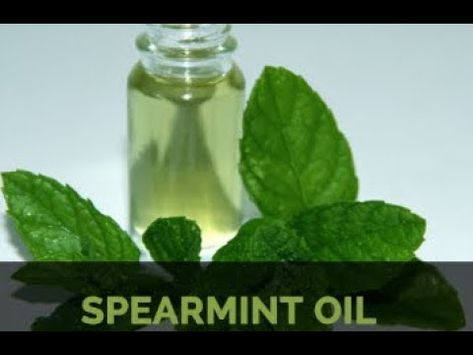 Because of its potent antimicrobial nature, the use of spearmint oil can provide these benefits