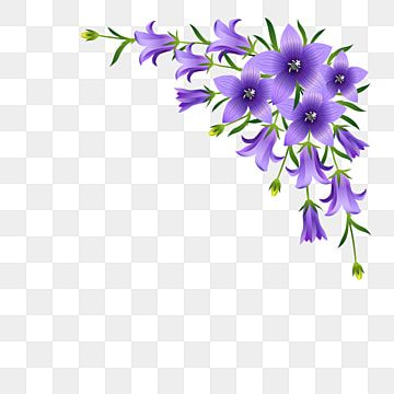 Vector Of Corner Flowers Free Vector Flower Watercolor Flowers Png And Vector With Transparent Background For Free Download Watercolor Flower Vector Vector Flowers Watercolor Flowers