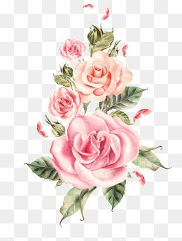 Hand Painted Pink Roses Bouquet Hand Painted Watercolor Hand