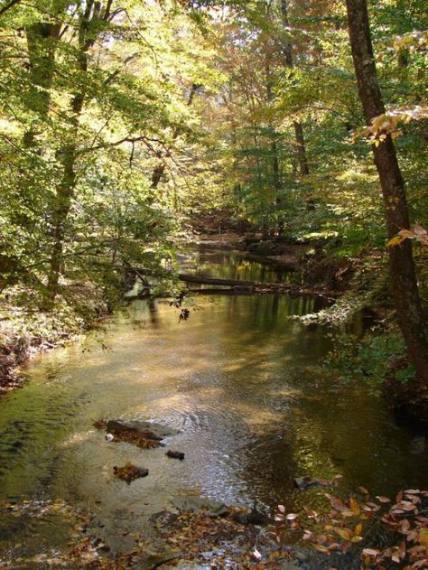 See a comprehensive guide to Maryland parks, major parks in suburban Maryland arranged by county. This guide to Maryland parks includes the regions best national, state, regional and large local parks. Park guide to Montgomery, Frederick and Prince George's Counties.
