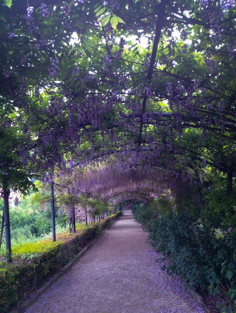 Villa Bardini Garden Florence Italy Travel Trip Country Roads