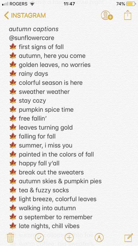 autumn captions  #animalcaptions autumn captions // fall captions // instagram captions // halloween // autumn // fall // aesthetic // insta // ig // tips // lifestyle