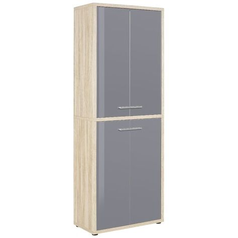 Ebern Designs Esel 4 Door Storage Cabinet Door Storage Grey Glass Tall Cabinet Storage