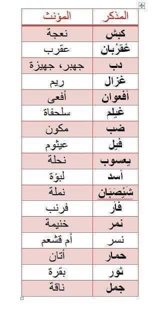 مذكر و مؤنث Learn Arabic Language Learn Arabic Online Arabic Language