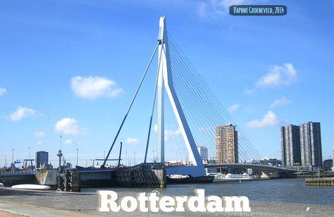 Sunkissed: De brug van Rotterdam - It's Travel O'Clock