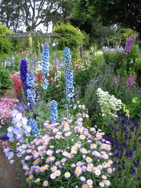 """Cottage Garden...would love to have a little of this in my yard.  Always loved """"English-type"""" garden...looks like nature at it's best"""