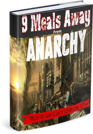 9 Meals Away From Anarchy Pdf Free Download Ebook Anarchy Guide Book