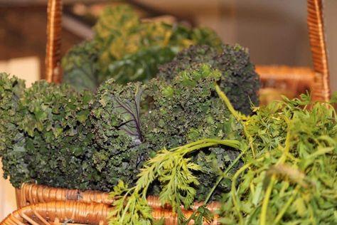 #veg #veggies #vegan #vegetarian #vegetables #kale #lettuce #carrot #carrotgreens #carrots #fresh #freshkale #freshkale #heirloomvegetables #organic #organicvegetables #freshfood #food #freshvegetables #basket #basketofveggies #delicious #yummy #tasty #green #freshveg #thepumpkinbaker #thepumpkinbakerblog #blogger #follow #followme