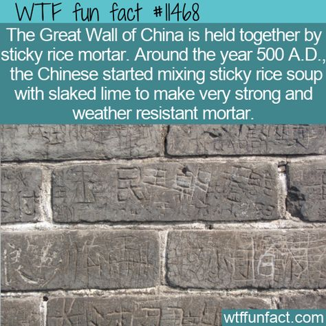 WTF Facts : funny, interesting  weird facts WTF Fun Fact - Sticky Rice Mortar #wtf #funfact #wtffunfact 11468 #funnyfacts #greatwallofchina #History #Places #randomfact #randomfacts #randomfunnyfact #slakedlime #soup #stickyricemortar #wtffunfact